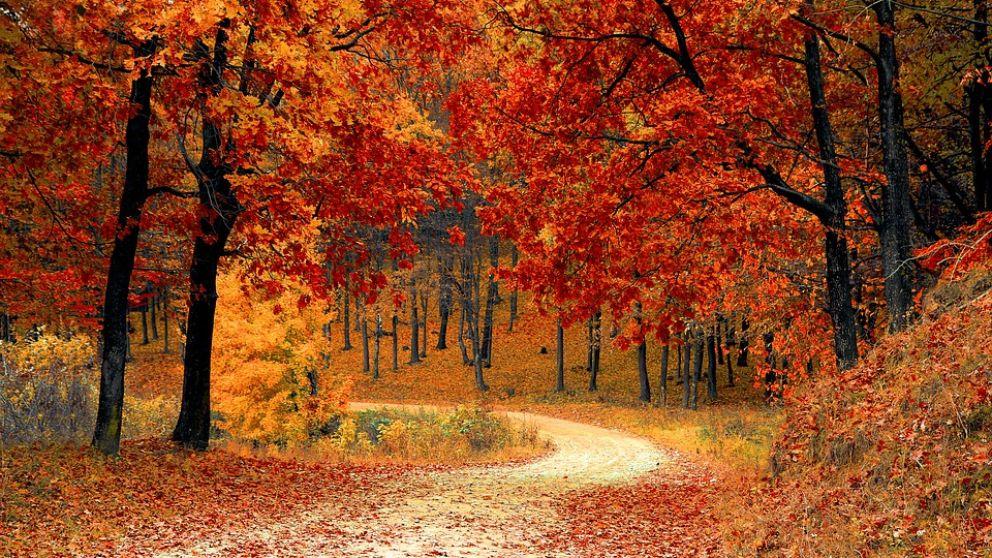 Arranca el equinoccio de otoño