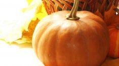 Propiedades de las verduras de otoño