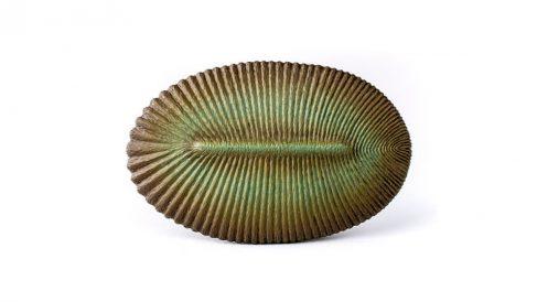 Dickinsonia, la huella animal más antigua de la Tierra