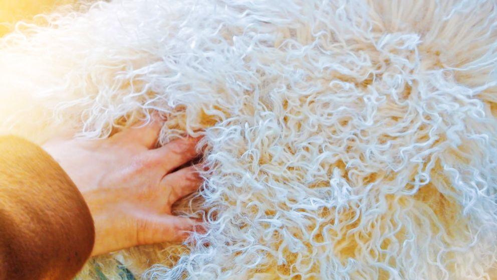 Cómo hacer una alfombra de lana paso a paso