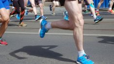 Existen diferentes tipos de fibras musculares