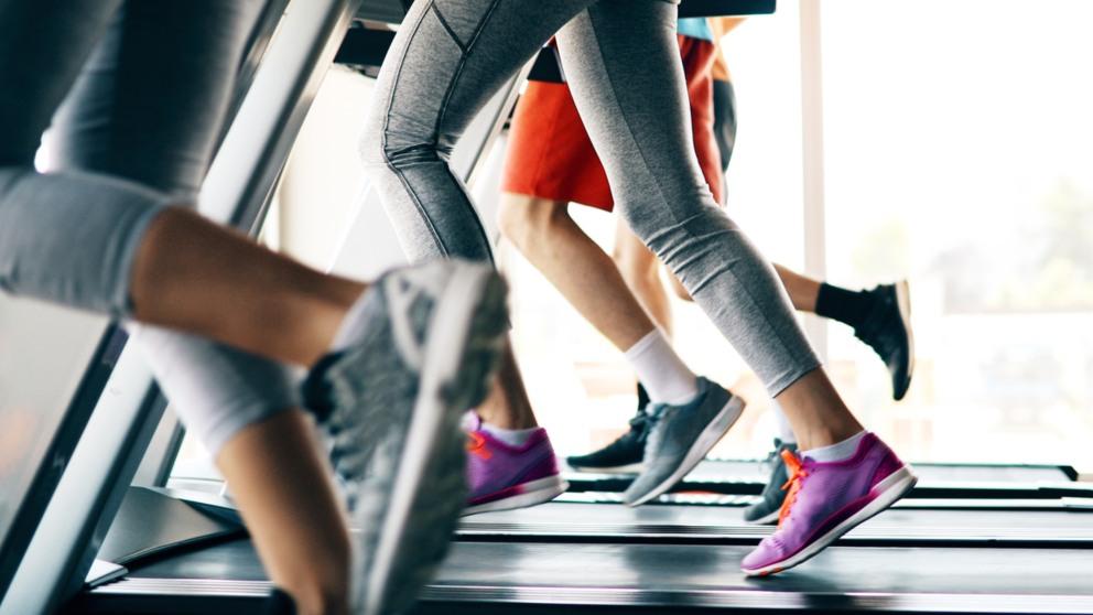 Descubre Citas y frases para volver al gym