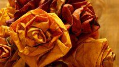 Las hojas secas permiten realizar composiciones tan interesantes como flores