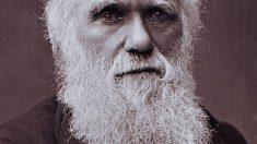 Charles Darwin regresa a Inglaterra el 2 de Octubre de 1836 | Efemérides del 2 de Octubre de 2018