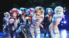 El musical Cats se estrena en Broadway el 7 de octubre de 1982 | Efemérides del 7 de octubre de 2018