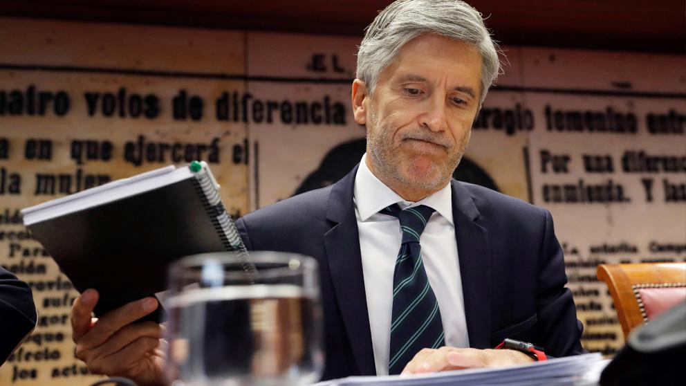 Fernando Grande-Marlaska, ministro del Interior en funciones. (Foto: EFE)