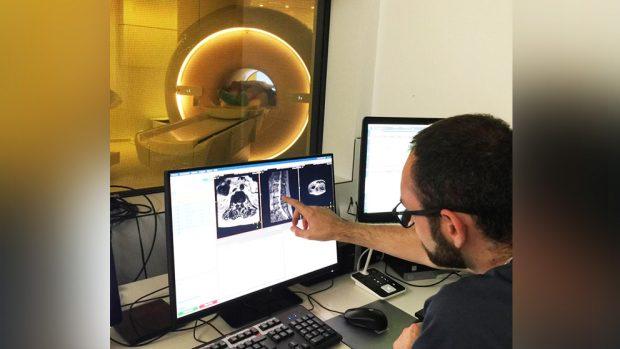 El futuro de la Medicina en Córdoba ya es una realidad: el nuevo hospital de Quirónsalud funciona ya a pleno rendimiento