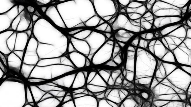 ejercitar las neuronas