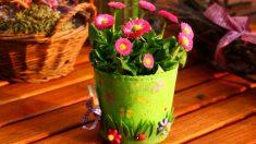 Decora tus macetas y así tus plantas serán más originales