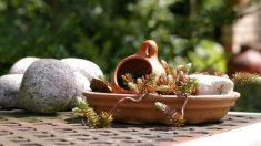 Si tienes una mesa de jardín, decórala de forma original