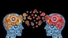 Descubre cómo la ciencia logra conectar tres cerebros entre sí
