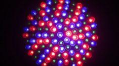 La relación de las luces LED y el cáncer