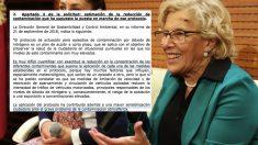 Manuela Carmena y el informe municipal. (Foto. Madrid)
