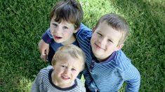 Qué rasgos vienen a determinar la personalidad de los niños