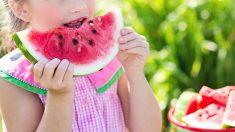 En muchas ocasiones es muy importante saber abrir el apetito para alimentarse bien