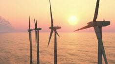Cobra (ACS) prevé invertir 450 millones en un proyecto eólico offshore en Escocia (Foto: iStock)