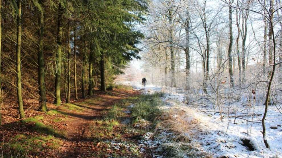 Aprende de dónde viene el nombre de las estaciones del año