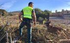 La búsqueda del niño desaparecido en Mallorca en el punto indicado por un perro acaba sin resultado