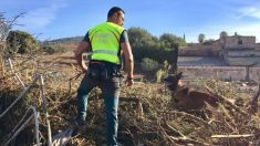 Labores de búsqueda en Mallorca (Foto: 112 Illes Balears)
