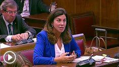 Arenales Serrano en el Congreso.