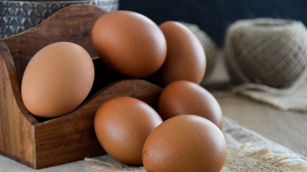 El 75% de la composición de los huevos es agua
