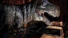Un T-Rex en la exposición Jurassic World: The Exhibition, que llega a Madrid el próximo 17 de noviembre. Foto: Sold Out