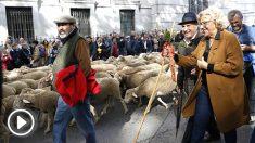 Carmena junto a los pastores que conducían el rebaño (Foto: EFE).