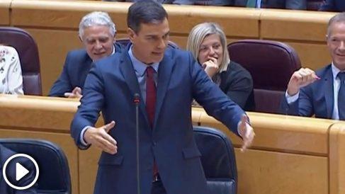 El presidente del Gobierno, Pedro Sánchez, en la sesión de control al Senado