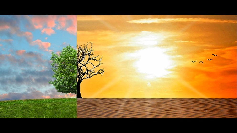 Conoce las consecuencias del cambio climático