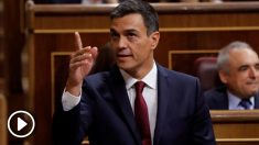 Pedro Sánchez comparece en el Congreso(EFE).