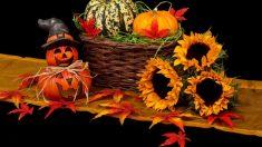 ¿Cuál es el verdadero origen de la noche de los muertos de Halloween?