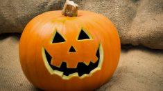 La calabaza de Halloween suele tener un intenso color naranja