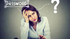 Los pasos para saber cómo utilizar un gestor de contraseñas