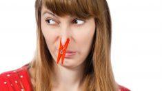 El olor a humedad puede ser horrible en el hogar