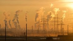 Existen muchos tipos de contaminación.