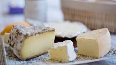 Es una suerte encontrar tanta variedad de quesos