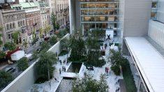 El 7 de noviembre de 1929 se inaugura el MOMA en Nueva York | Efemérides del 7 de noviembre de 2018