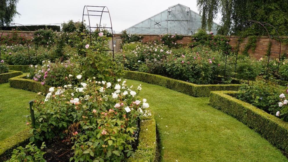 El jardín victoriano puede aportar muchísimo a un ambiente natural