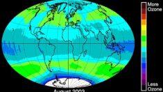 Así es como la capa de ozono se recupera del efecto de los gases