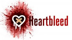 Así es Heartbleed