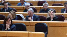 Carmen Calvo en el Senado (Vicepresidencia).