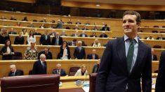El presidente del Partido Popular, Pablo Casado, durante la reunión del Grupo Popular en el Senado. (Foto: Efe)