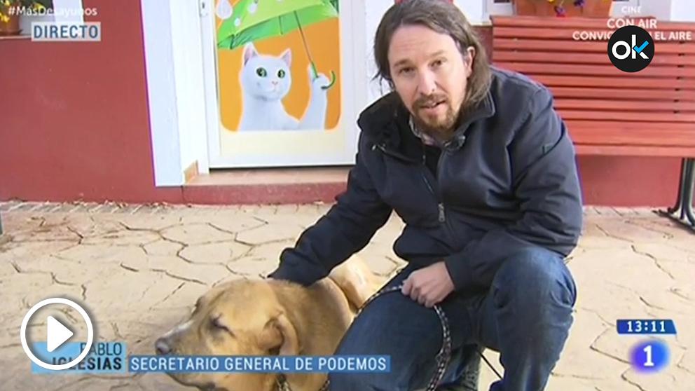 Pablo Iglesias acaricia a una perra en TVE mientras es entrevistado por Xabier Fortes