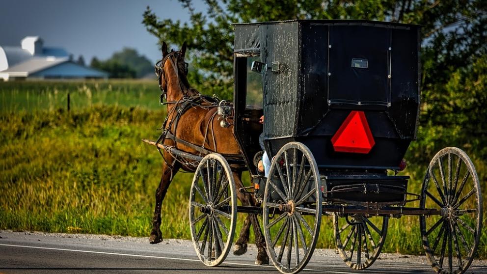 Carro de caballos de los Amish.