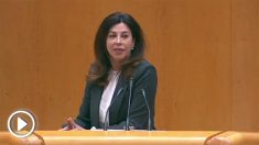 Arenales Serrano, senadora del PP.