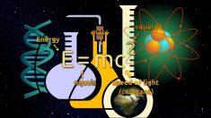 Día Mundial de la Ciencia 2018