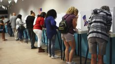 Elecciones legislativas Estados Unidos 2018. Foto: AFP