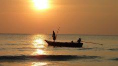 Pescadores faenando.