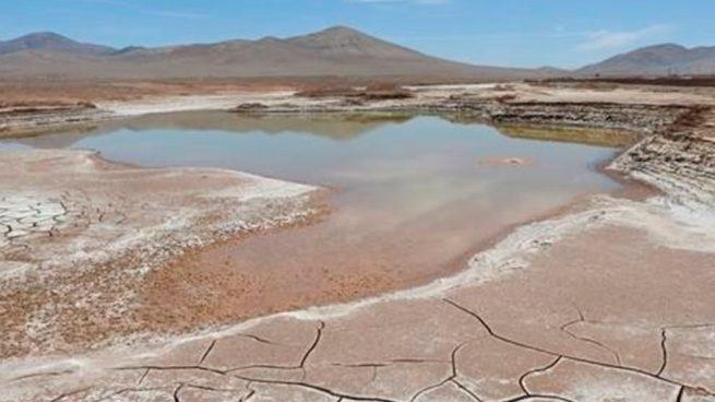 Llueve en desierto después de 500 años