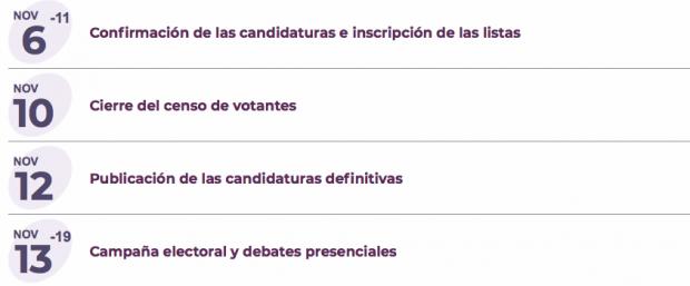 Crisis en Podemos: retrasa todas sus Primarias tras la purga de los ediles de Carmena